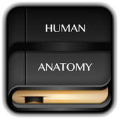 Human Anatomy Dictionary icon