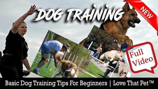 Dog free Training poster