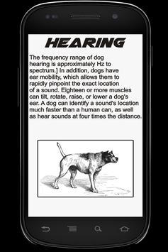 Dog Info Book apk screenshot