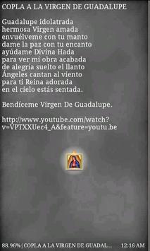 Virgen de Guadalupe Free apk screenshot