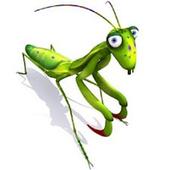 Cricket Sound icon