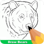 How To Draw Bears icon