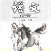初中语文七年级上 icon