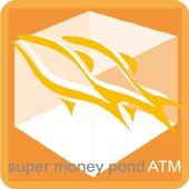 鈔級魚池 icon