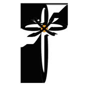 VerticApp icon