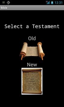 Easy Bible poster