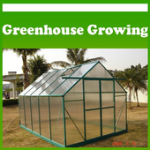 Greenhouse Growing icon