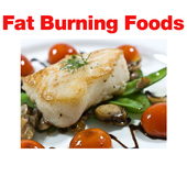 Fat Burning Foods ! icon
