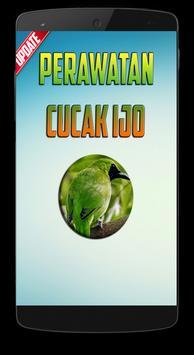 Perawatan Burung Cucak Ijo poster