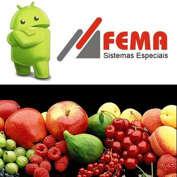 Sistema SVC FEMA apk screenshot