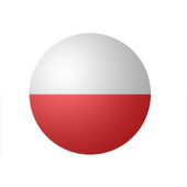 Русско-польский разговорник icon