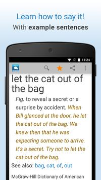 Idioms and Slang Dictionary apk screenshot