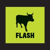 FLASH Trader icon