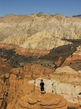 Canyon Wallpapers apk screenshot