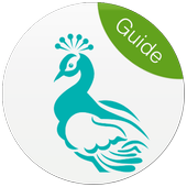 7Nujoom Live Video Call Guide icon