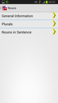Language Assistant Eng-Rus apk screenshot