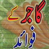 Gajar k Fawaaid icon
