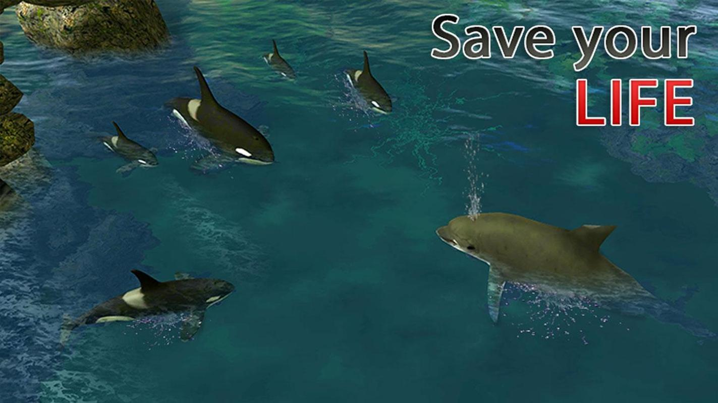 Free Dolphin Game