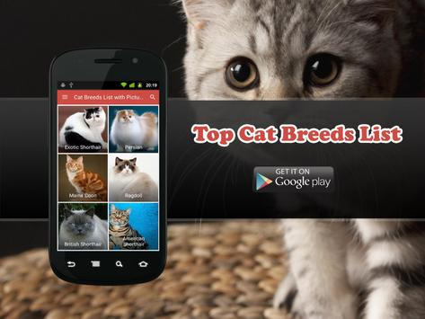 40+ Most Popular Cat Breeds apk screenshot