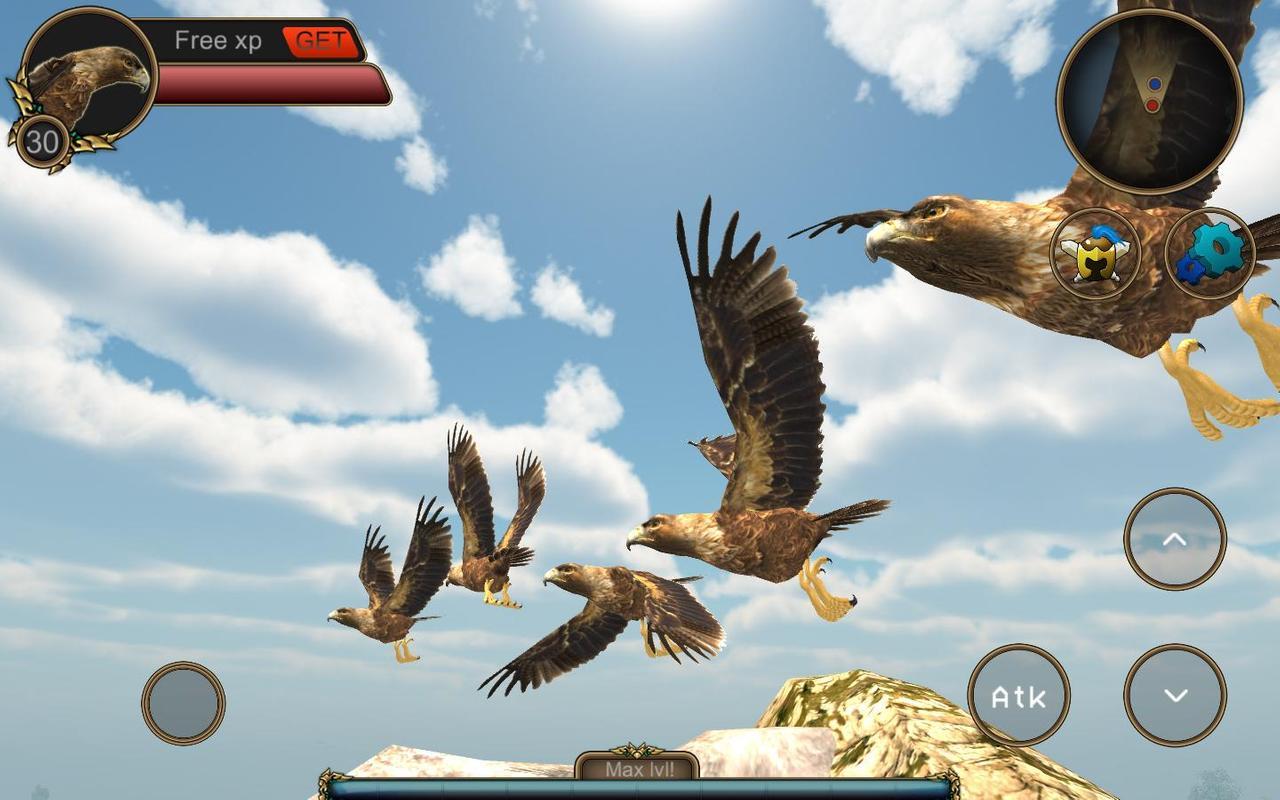 Flying Bird Games Online Free