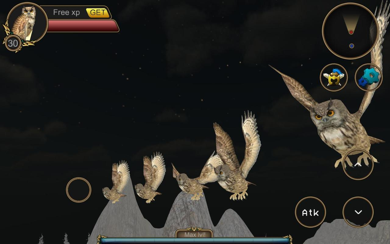 Owl Games Online