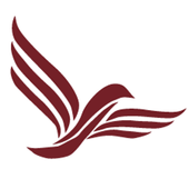 Discovery Risk Solutions icon