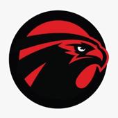 FALCONTALK icon