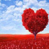 En Güzel Aşk Sözleri icon