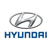 Hyundai Access Point icon
