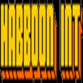 Habboon Interpol icon