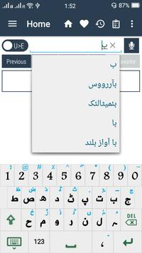 Urdu Dictionary apk screenshot