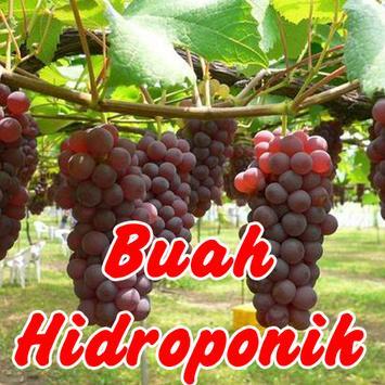 Aneka Buah Hidroponik poster