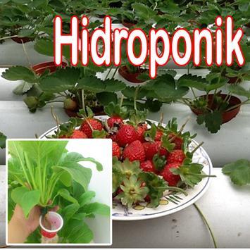 Hidroponik Plants poster