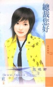 季葒總裁言情集 poster