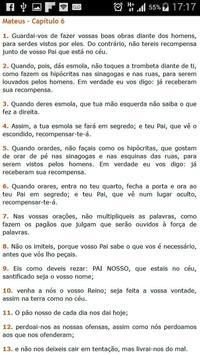 Spanish Bible apk screenshot