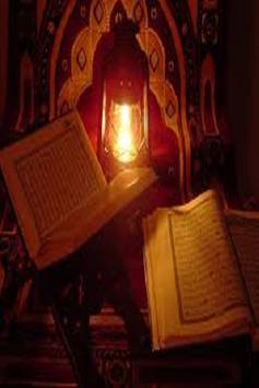 Quran in Punjabi Gurmukhi apk screenshot
