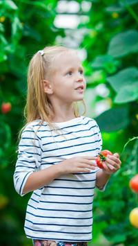 Organic Gardening Guide poster