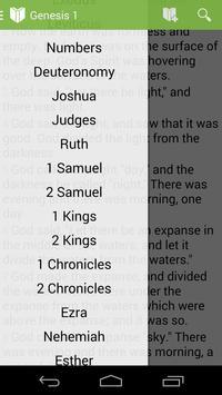 Bible - KJV (King James) poster