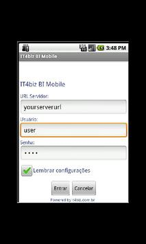 IT4biz BI Mobile poster