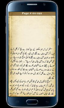 Action Agents Part2 Urdu Novel poster