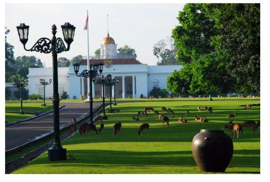 20 Tempat Wisata di Bogor apk screenshot