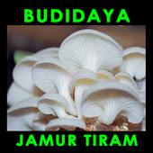 Budidaya Jamur Tiram icon