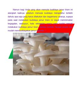 Budidaya Jamur Tiram apk screenshot