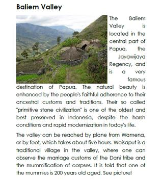 Travel Guide Papua and Maluku apk screenshot