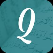 QFlip icon