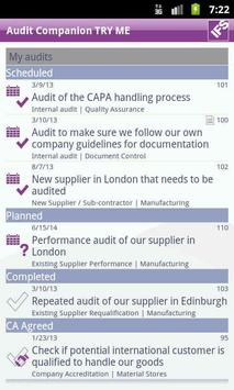 IFS Audit Companion poster