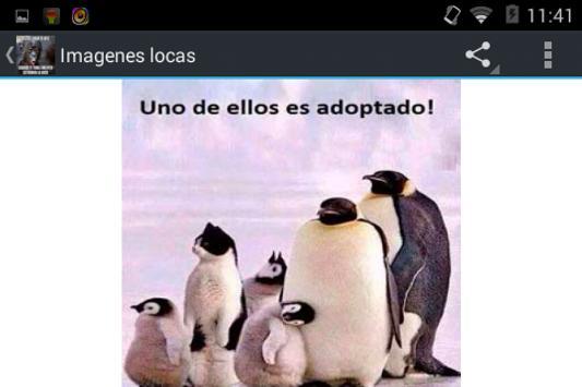 Imagenes locas apk screenshot