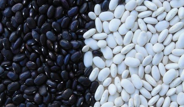 Black Bean & Corn Quesadillas apk screenshot