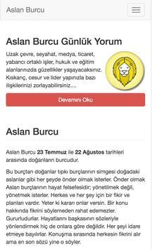 Aslan Burcu poster