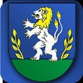Rudinská icon